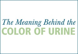 The Meaning Behind the Color of Urine