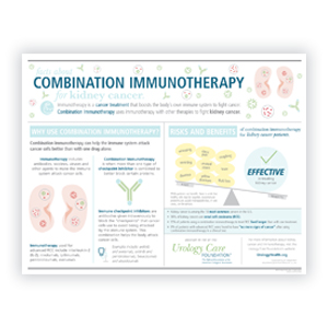 Combination Immunotherapy for Kidney Cancer