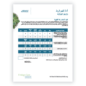 Arabic Overactive Bladder Assessment Tool