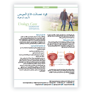 Arabic How to Strengthen Your Pelvic Floor Muscles