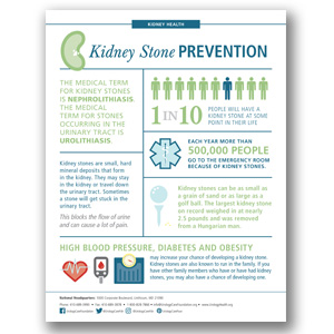 Kidney Stone Prevention Infographic