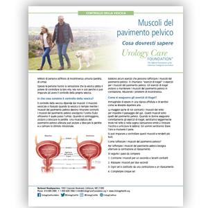 Italian Pelvic Floor Muscle Strength What You Should Know