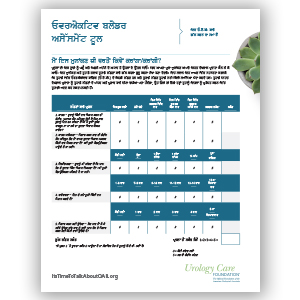 Overactive Bladder Assessment Tool Punjabi