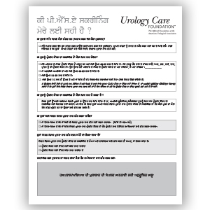 Prostate Cancer Screening Tool Punjabi