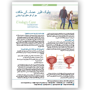 Urdu How to Strengthen Your Pelvic Floor Muscles