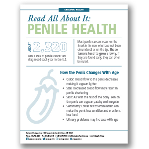 Penile Health Infographic